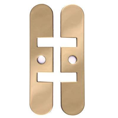 Numatic Concealed Jamb Door Closer Face Plate - Polished Brass)
