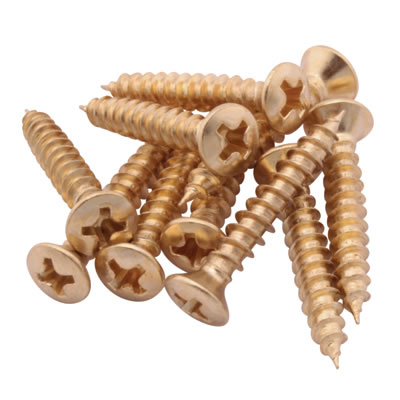 LASA Spare Window Screws - Polished Brass - Pack 10)